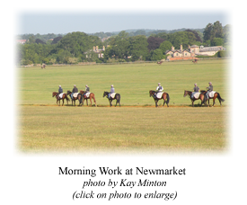Morning Work at Newmarket