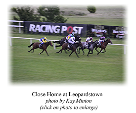 Close Home at Leopardstown