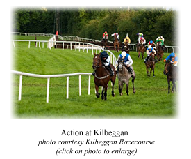 Action at Kilbeggan